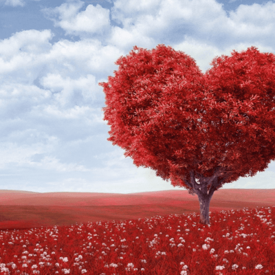 God's Perfect Love: 5 Things He Wants You to Know