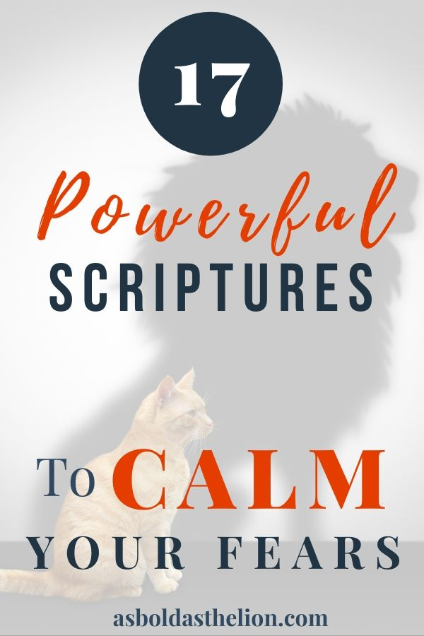 17 powerful scriptures to calm your fears